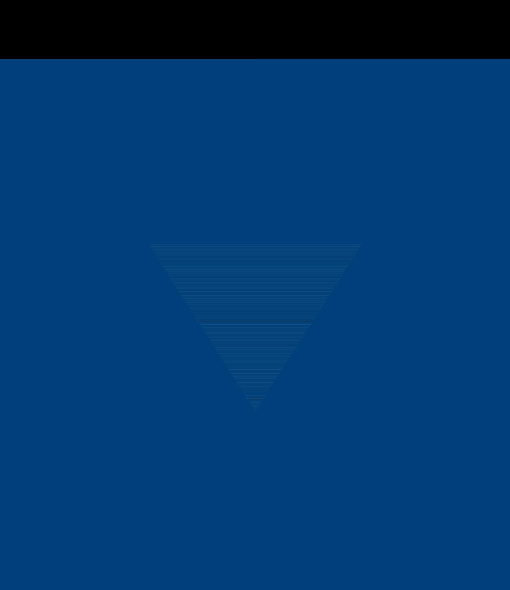 BVM Partner